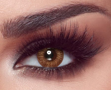 Bella One Day Almond Brown - 10 lenses