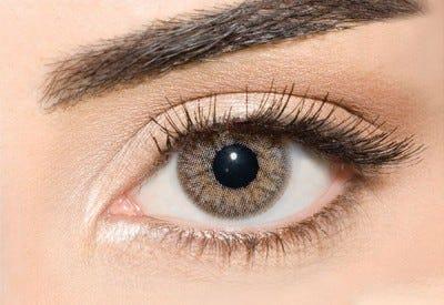 Waicon Trikolor - Gray Contact Lenses